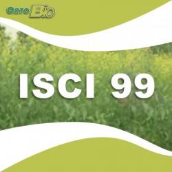 isci99 - triumph