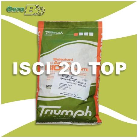 isci20top - triumph
